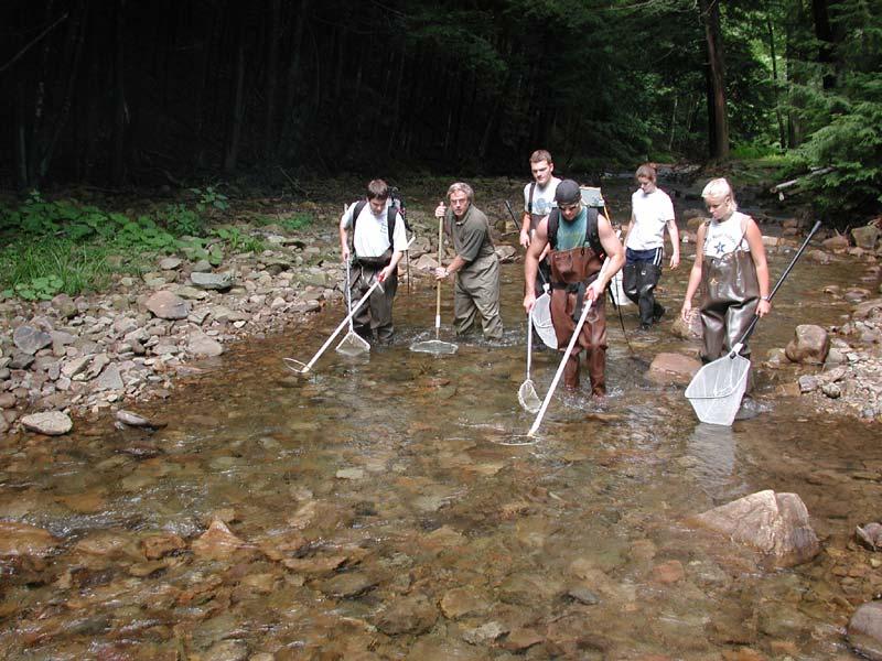 Clean Water Institute Reports - Clean Water Institute